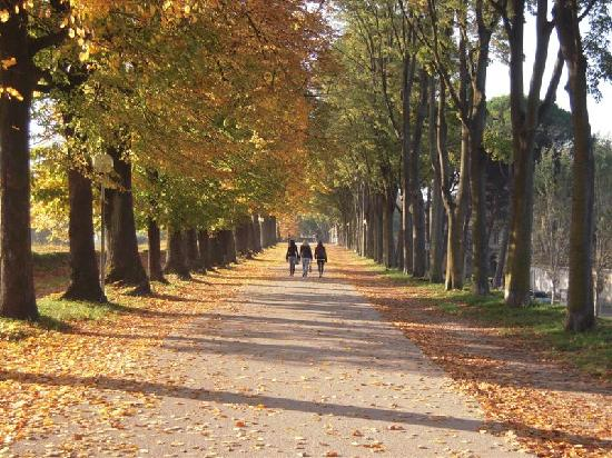 Passeggiata Mura a Lucca